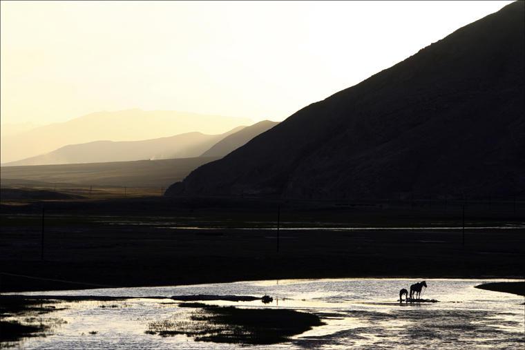 Bayinbuluk Swan Lake