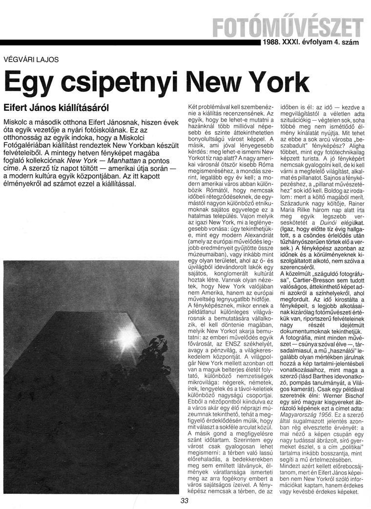 csipetnyi-new-york_33o