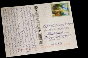 anyam-udvozlo-lapja-021
