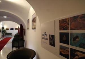 Marius Jovaisa kiállítása, photo eifertjanos_0041