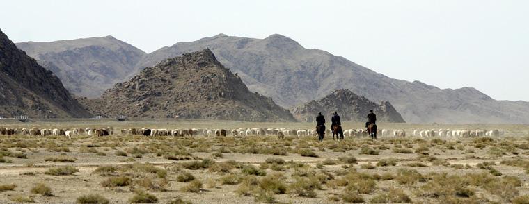 China, Xinjiang, Balikun Pasture, Photo: Eifert János