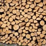 Wood-Bulgária-Koptivstica-Photo-Eifert