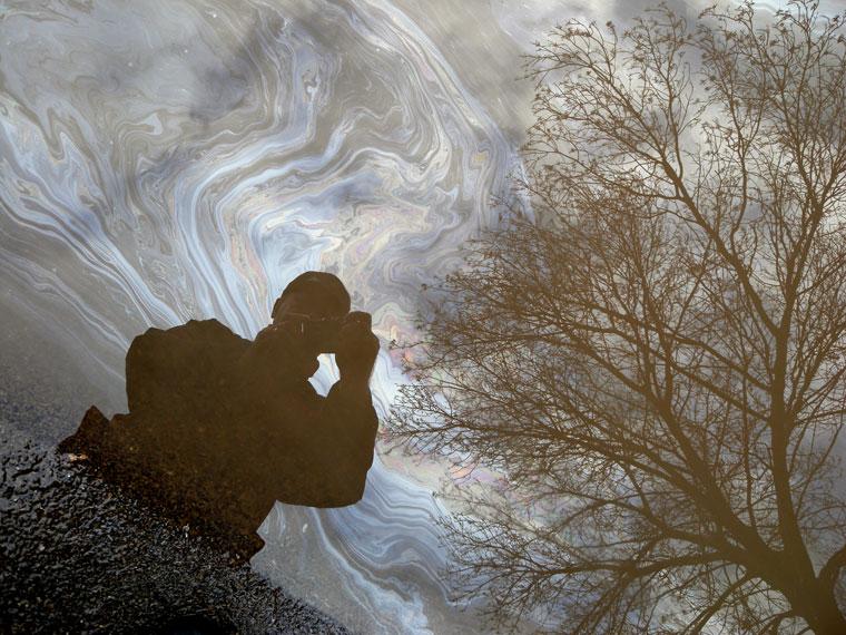 Önarckép-olajfoltban