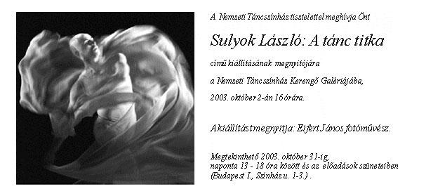 Sulyok-László-kiállítás-megh