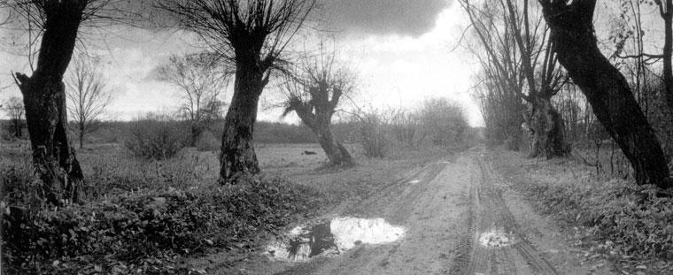 Zvirgzdas-Landscape-01
