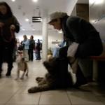 Állatkórház-várakozás-Pocival