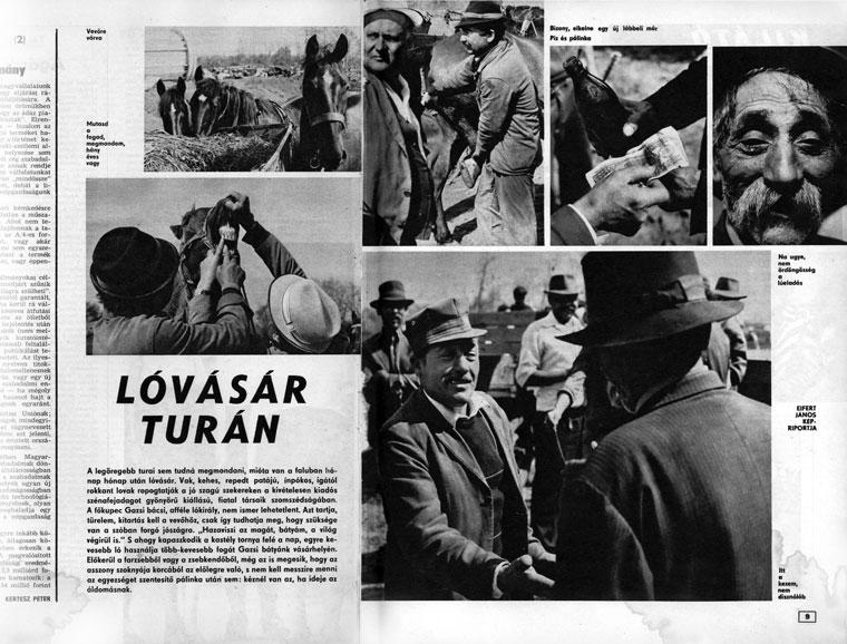 Lóvásár Turán.  Eifert János képriportja - Lobogó, 1977. június 9.