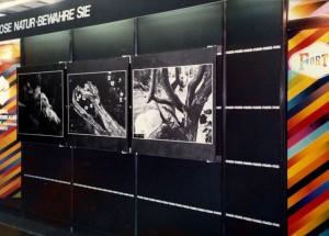 1984.09-Photokina-Köln-2