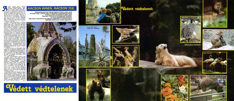 1986-12-Védett-védtelenek
