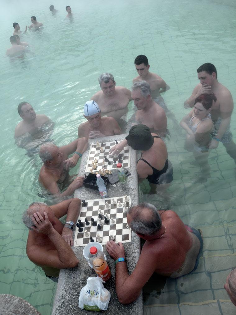Széchényi-fürdő, sakkozók a vízben (Photo: Eifert János)