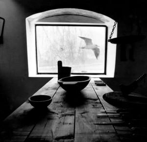 Eifert Jánops: Halálba zuhanó madár (1978)