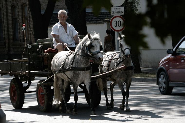 Lovaskocsi a piac felé tart (Photo: Eifert János)