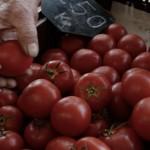 A vásárhelyi piacon 250 Ft a paradicsom kilója (Photo: Eifert János)