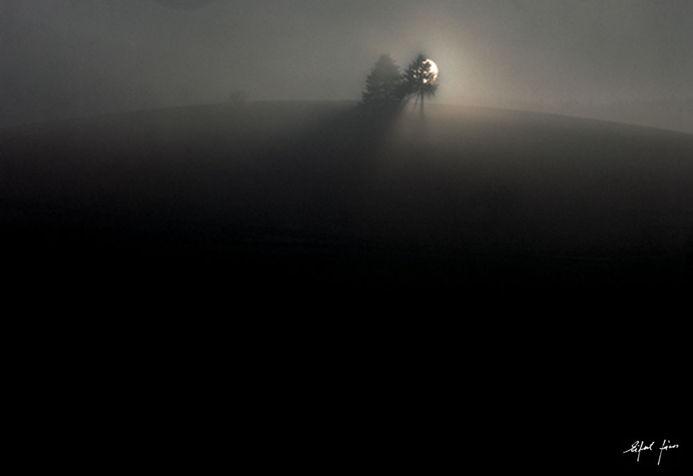 Eifert János: Hajnal (Montagne-au-Perche, Franciaország 1984)