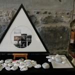 Kiállításrendezés-Svájc-Genf-02