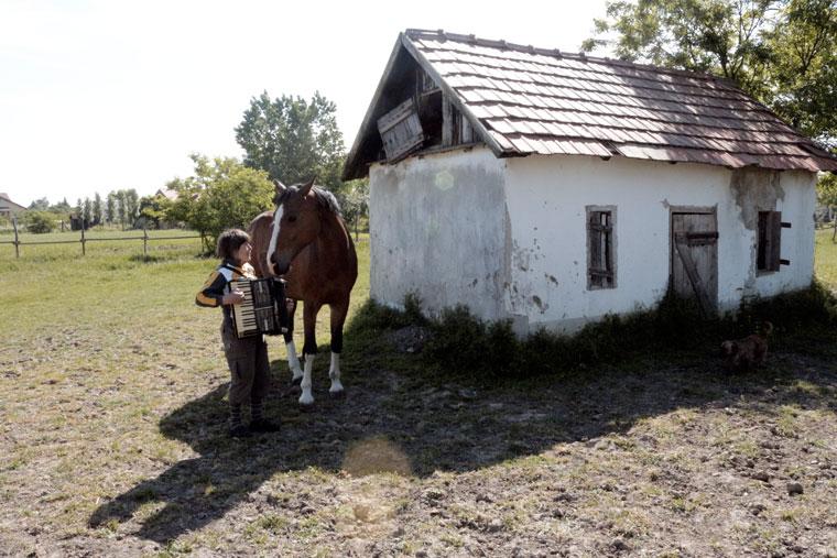 Kurai Anna a lovának tangóhermonikázik (Photo: Eifert János)