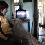 Aracsiné Kurai Anna gyik kutyájával, szobájában (Photo: Eifert János)