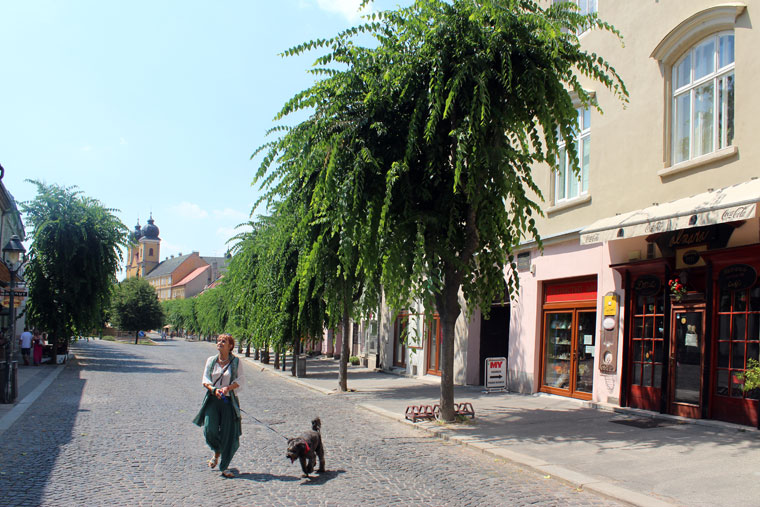 A főtér. Trenčín, 2013.07.27. (Photo: Eifert János)