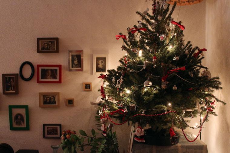 Karácsonyfánk (Eifert János felvétele)