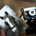 Durby első lovasképe és az első fényképezőgépe, egy Szmena (Eifert János felvétele)