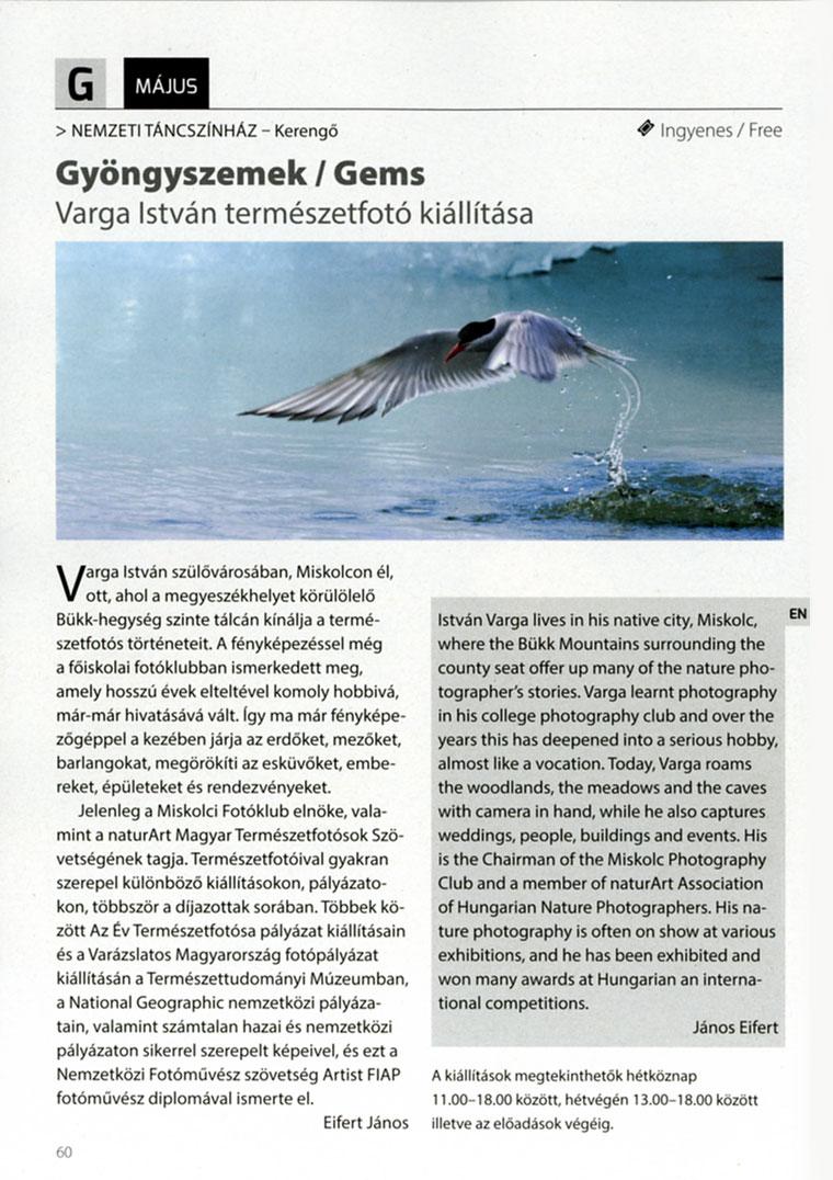 2014.05.-Varga-istván-kiáll