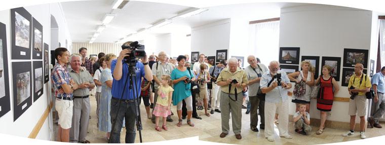 2014.07.18.-Gál-Cecília-kiáll.megnyitó-1