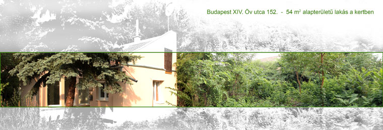2014.07.27.-Bp.-XIV.-Öv-u.-152