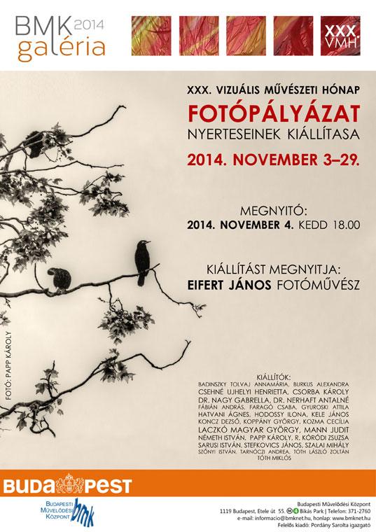 2014.11.04. XXX. Vizuális Művészeti Hónap fotópályázatának kiállítása (plakát)