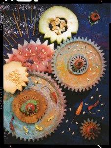 Farkas Antal jama: Dinnye fogaskerekkel, 1996