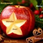 Pápai-Sarolta-Magyar-Emil