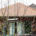 Hímes-tojások-háznál Valkonya, 2015.04.18. (Eifert János felvétele)