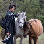 Aczél Kristóf lovakkal - Kismaros-Börzsönyliget, 2015.09.20. (Eifert János felvétele)