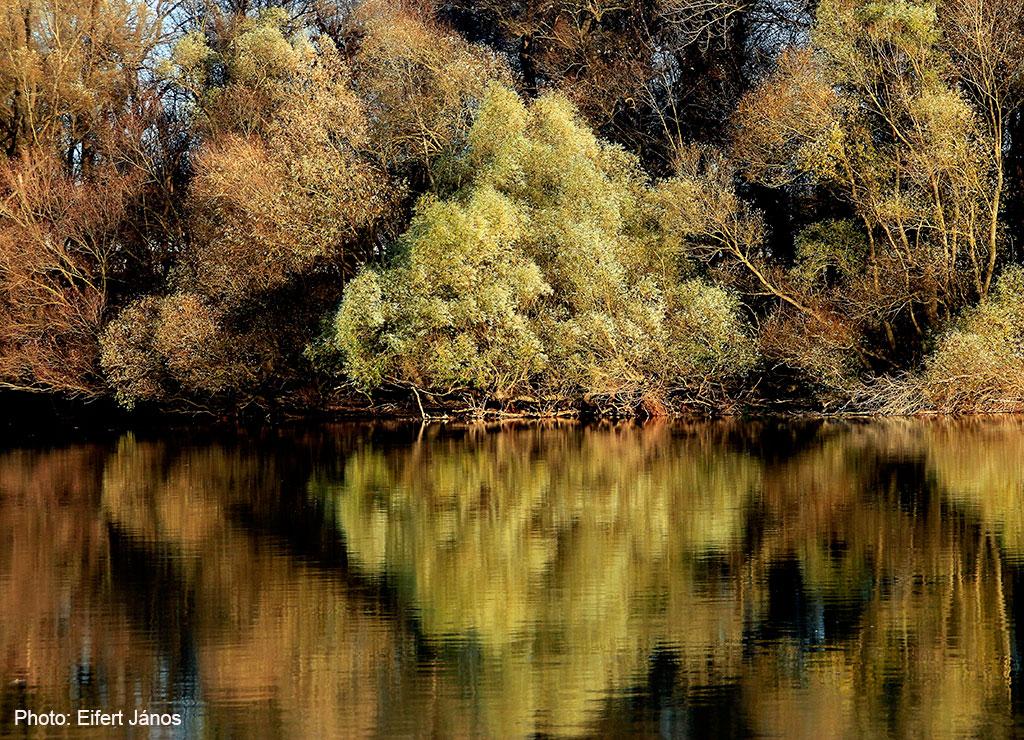 2015.11.24.-Duna-part-hajóról-őszi-pompában (Photo: Eifert János)