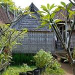2015.07.07.-Bali-Penglipura-Skanzen-házacskái