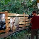 2016.08.17.-Harangozó Vince, az ECHO-TV operatőre forgat kertemben- (Eifert János felvétele)