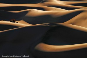 Kovács-Adrienn_Shadows-of-the-desert