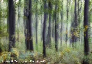 Jaszenák-Zsuzsanna_Festett-erdő