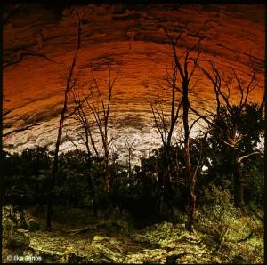 Ilku-János_Requiem-egy-erdőért---Offertorium-1