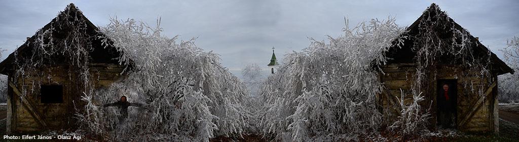 2016.12.25.-Börzönmcei-szőlőhegyen-Ági-és-János-varázslata