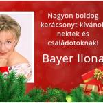 Bayer Ilona