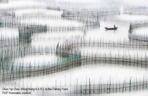 Chun-Yip-Chau (Hong-Kong-S.A.R.) Boat