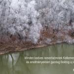 Molnár Gyula: TéliTiszapart