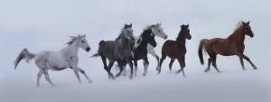 Eifert János: Vágtató lovak a hóban / Galloping horses in the snow (Bocska,