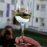 2017.05.13.-Grad-Negova-Kiállításmegnyitón-Egy-pohár-bor (Eifert János felvétele)