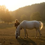 2017.08.19.-Bocska-Dajka-Margot-Judit-lovat-fényképez_Photo-Olasz-Ági
