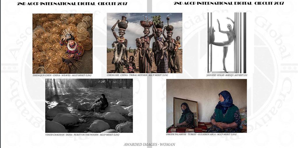 2nd-AGCP-DIGITAL-CIRCUIT-2017_Catalogue_Eifert_Arabesque_Awarded