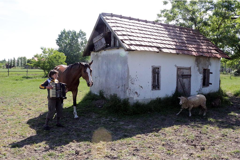 Eifert János: Muzsika a tanyán / Music on the farm (Hódmezővásárhely, 2013)