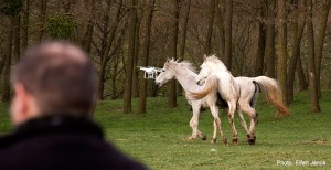 2018.04.15.-Bocska-Gime-a-drónnal-a-lovak-között-02