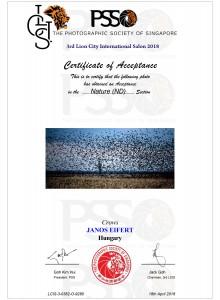 2018.04.19.-PSS_Certificate_Eifert_Crows